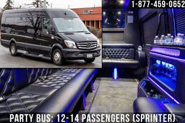 17-Party-Bus-12-14-Passengers